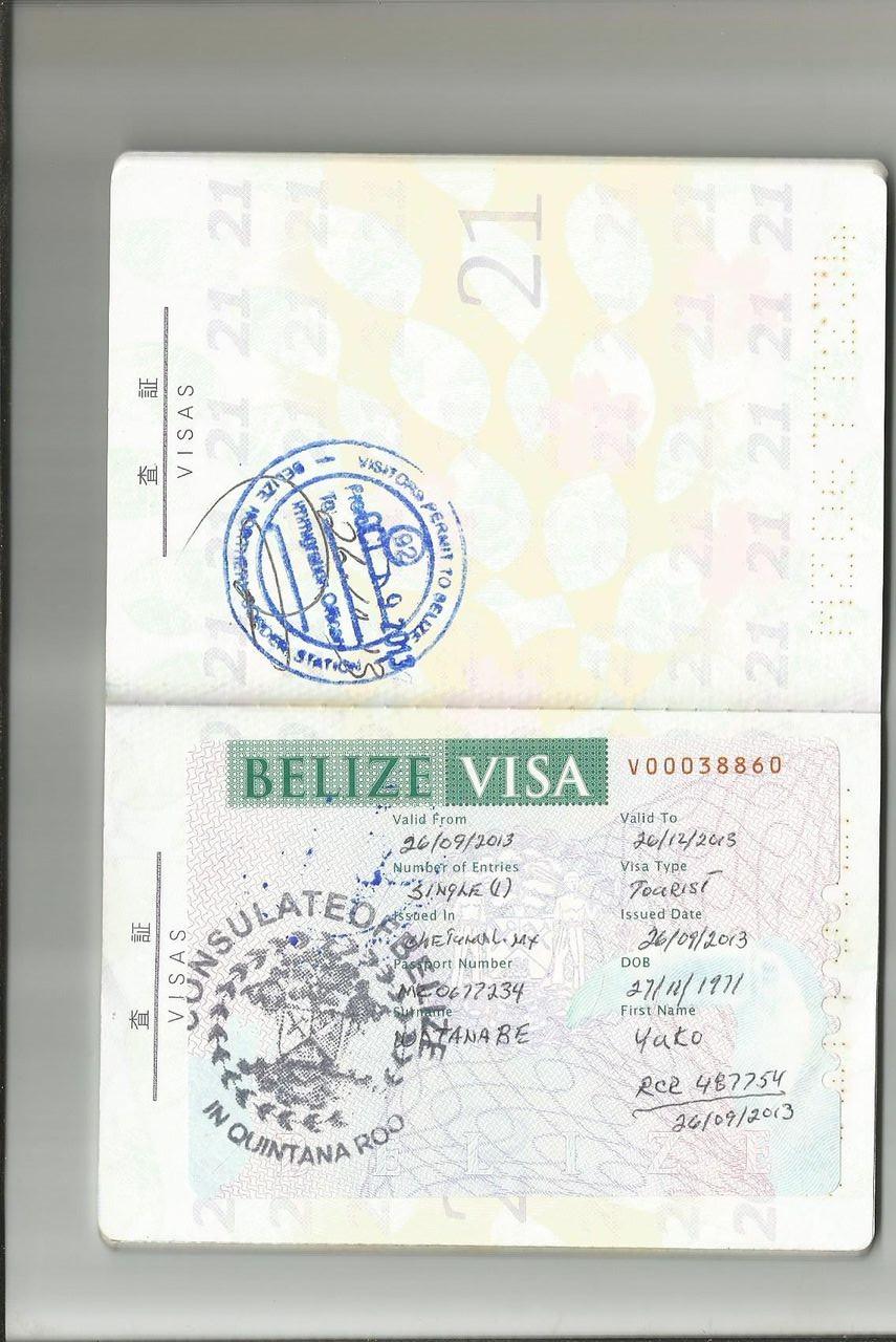 visa new