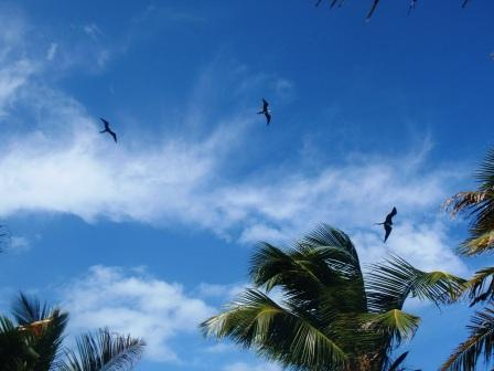 ハーフムーン島3