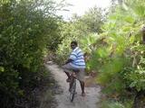 自転車探検