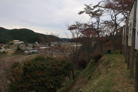 kameyamajyushi_2