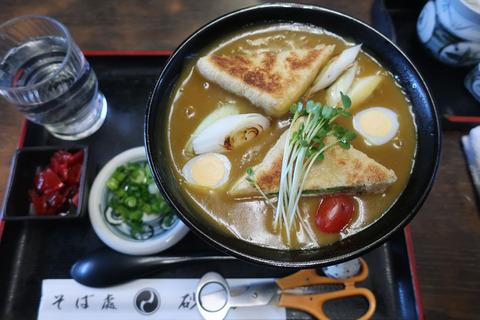 toyohashi_curry_udon