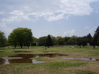 20100429ピクニック