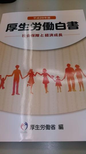 平成29年版厚生労働白書(表紙)