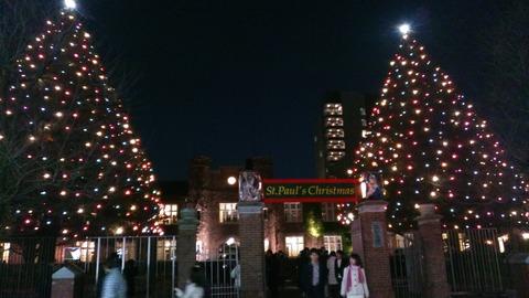 立教大学クリスマスツリー2