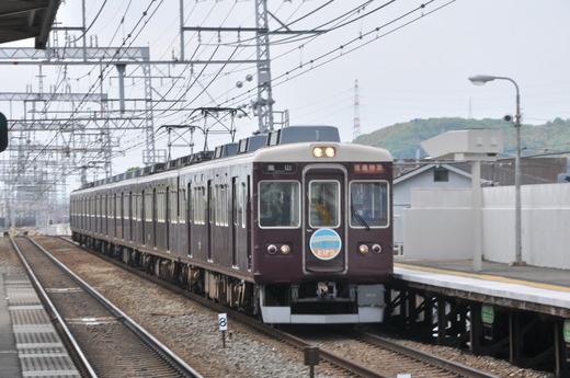DSC_9536