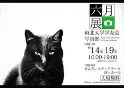 6月展ポスターいち-01
