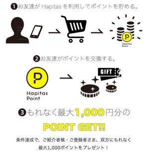 hapitas_shokai_spring2