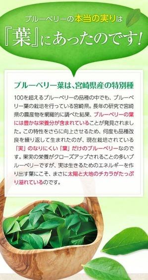 MiyoriHa03