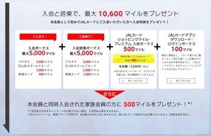 JAL AMEX_SummerCampain3