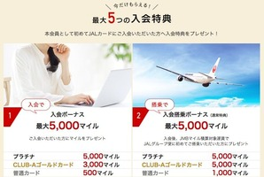 JAL AMEX Special1