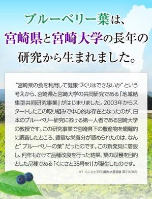 MiyoriHa05