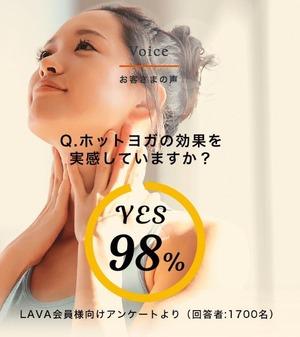 LAVA_voice