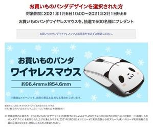202101_RC_campain_mouse