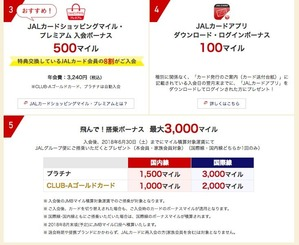 JAL AMEX Special2
