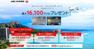 JAL AMEX_SummerCampain1