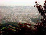油山から市内を望む