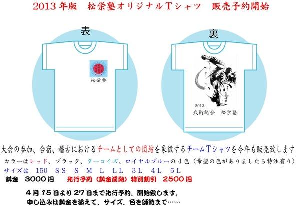 2013-Tシャツ