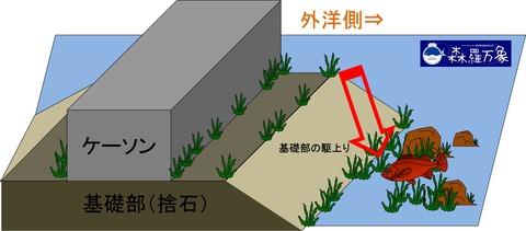 堤防メバル画像