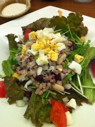 雑穀と豆の彩りシーザーサラダ
