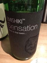 EMISHIKI Sensation