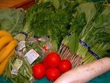 野菜いろいろ�