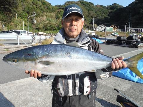 291128_sakakibara