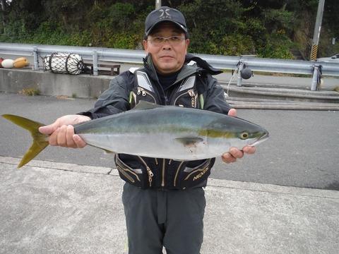 291130_kikuchi