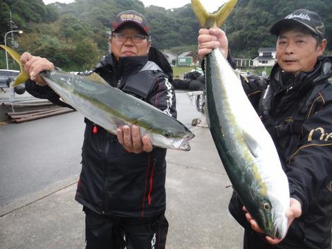 291108_sakaguchi