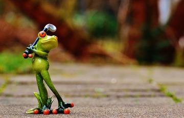 frog-1212201_1920