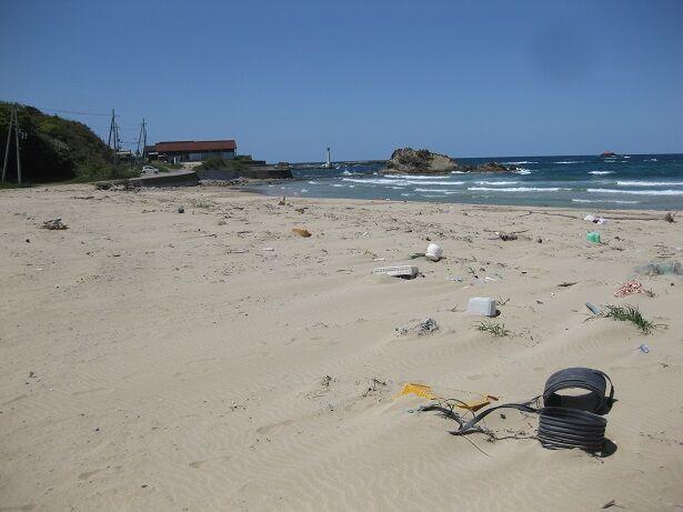 小天橋海浜清掃