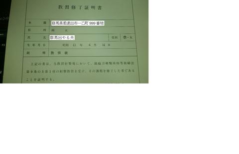 DSC_0298_01