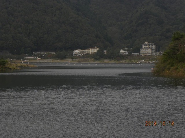 181018-2海大和田