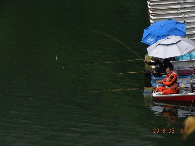180519-2固定ボート釣れた⓶