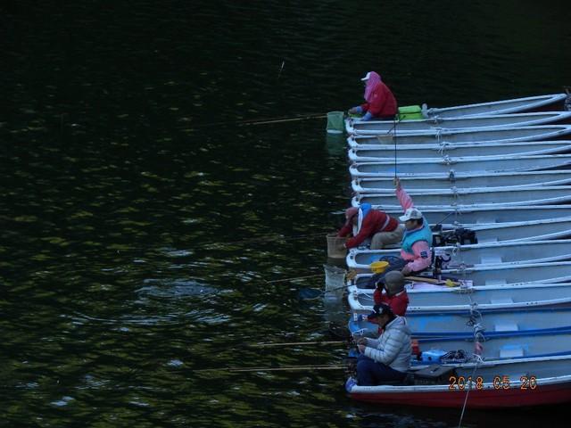 180520-2固定ボート�