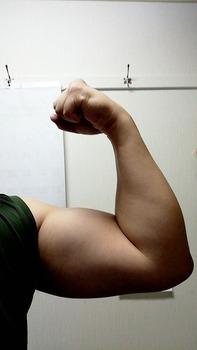 筋トレしたら腕が太くなったよ(※画像あり)