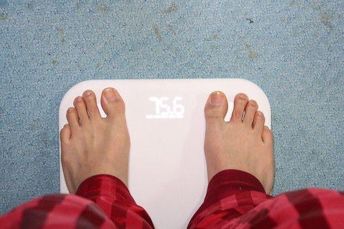 僕くん、この1日の食事量で太る意味が全くわからない