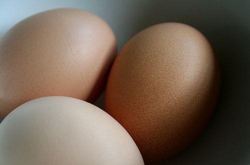 彡(^)(^)「ロッキーの卵飲み干すシーンカッコええ!ワイもやるで!」