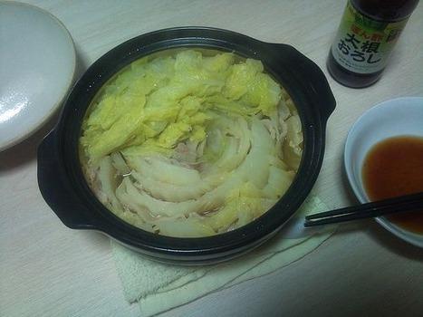 白菜と豚バラを鍋にぶち込んでみりんで煮込んだら甘すぎて吐いた