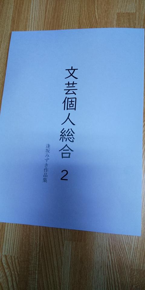 『文芸個人総合2 逢坂みずき作品集』著者・逢坂みずき