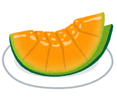 fruit_melon_hitokuchi_orange