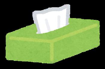 tissue_paper_box_open