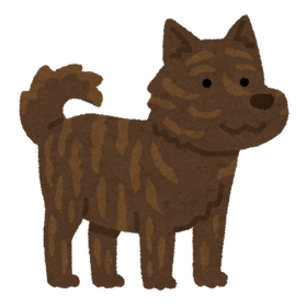 dog_kaiken