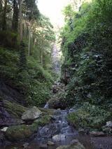 白藤の滝0909