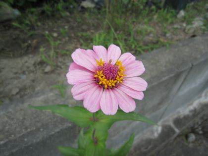 2012.8.18
