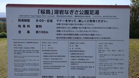 asiyusakurajima007