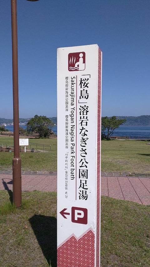 asiyusakurajima001