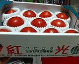 紅光のトマト