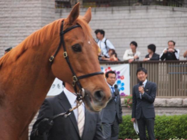 大関さんと福原アナが見つめるフライト