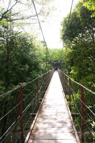 150321_吊り橋