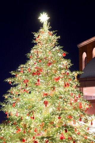 141225_クリスマス